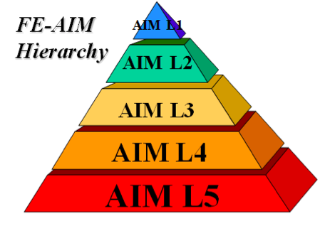 The Five Hierarchy Levels of a FE-AIM Program.
