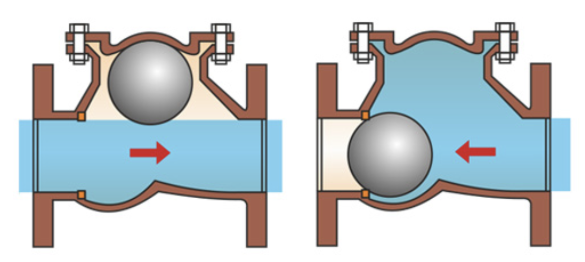 What Are Critical Check Valves